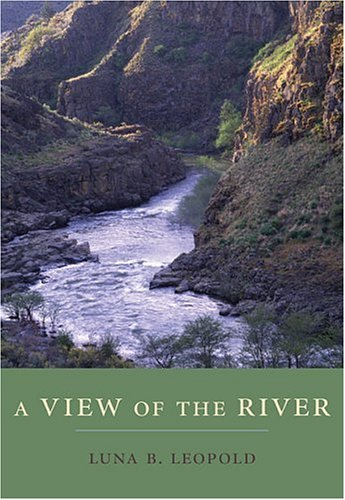 A View of the River