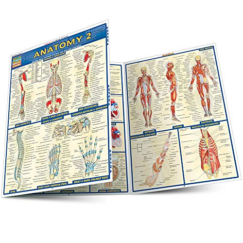 Anatomy 2 - Reference Guide (8.5 x 11)