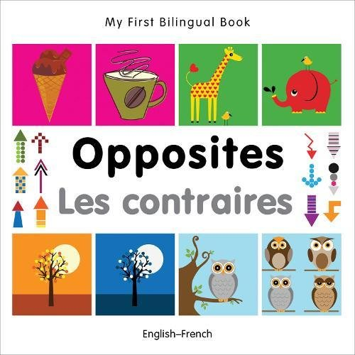 My First Bilingual Book - Opposites - (English-French)