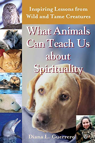 What Animals Can Teach Us About Spirituality
