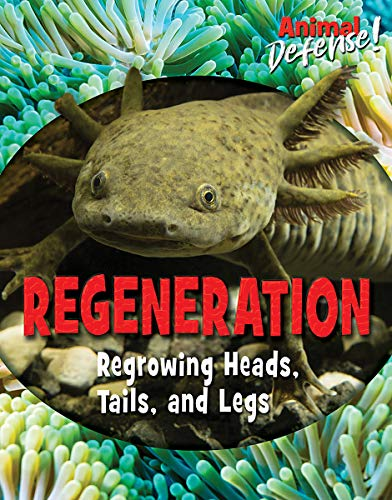 Regeneration: Regrowing Heads, Tails, and Legs