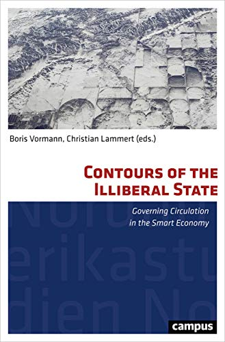 Contours of the Illiberal State