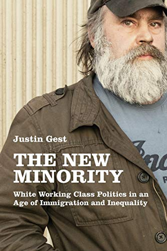 The New Minority : White Working Class Politics in an Age of Immigration and Inequality