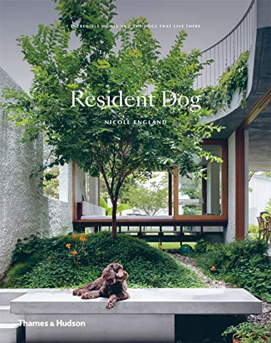 Resident Dog : Incredible Homes and the Dogs That Live There